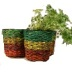 Sweet Wrapper Planter